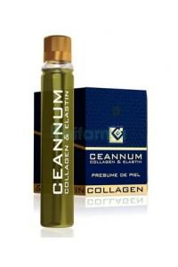 Ceannum Colageno & Elastina 10 Viales